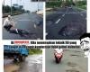 gambar meme indonesia