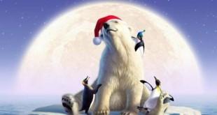 gambar-animasi-hewan-beruang-kutub.jpg
