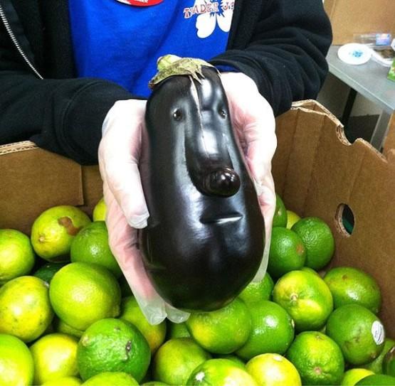gambar buah-buahan membentuk wajah unik banget