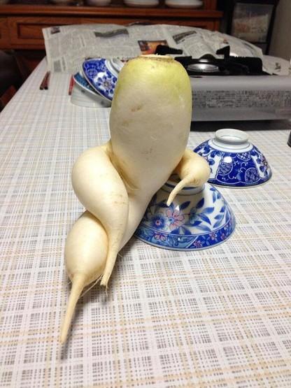 gambar buah lucu unik dan aneh