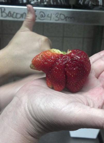 gambar buah strawberry yang unik