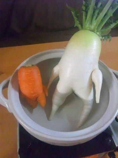 gambar sayuran yang lucu unik dan aneh