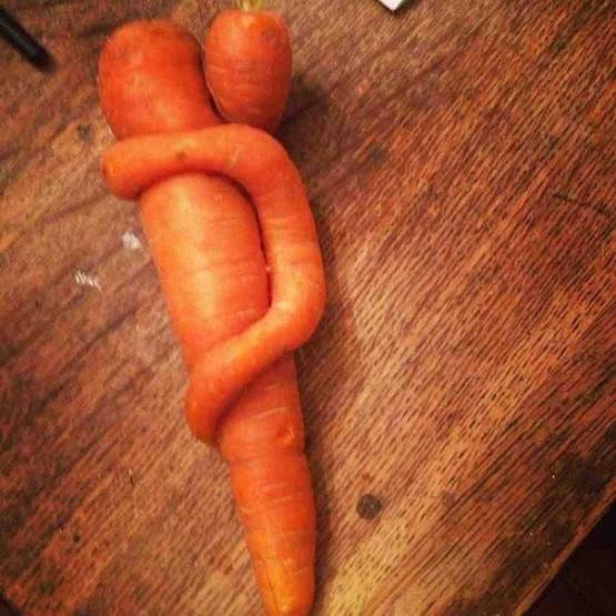gambar wortel yang lucu dan unik