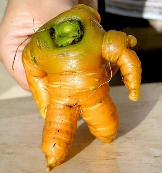 gambar wortel yang lucu seperti robot