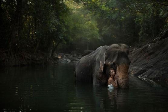 foto model cantik dengan gajah