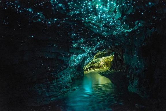 Gambar Pemandangan ALam Terindah di Dunia Glow Woem Cave New Zeland