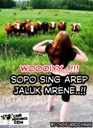 Unduh 94+ Gambar Lucu Bahasa Jawa Untuk Komentar Facebook Terupdate