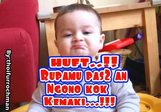 Download 63 Gambar Hewan Lucu Bahasa Jawa Terupdate