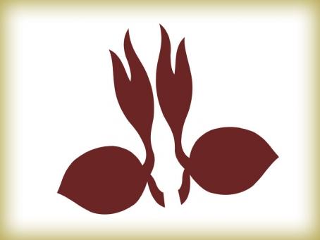 gambar lambang pramuka
