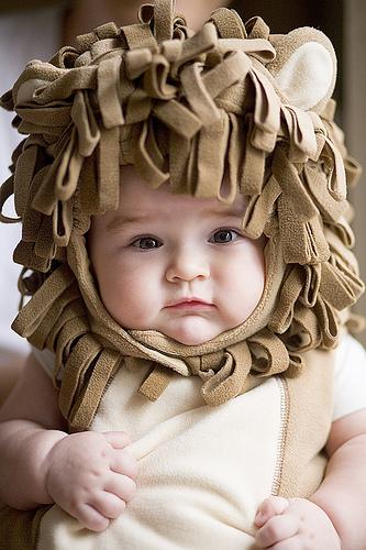 bayi imut lucu