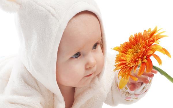 gambar bayi imut mirip boneka