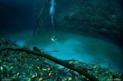 gambar aneh lautan terpisah asin tawar