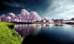 gambar pemandangan cantik di dunia