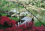 gambar pemandangan cantik di korea