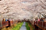 gambar pemandangan cantik korea