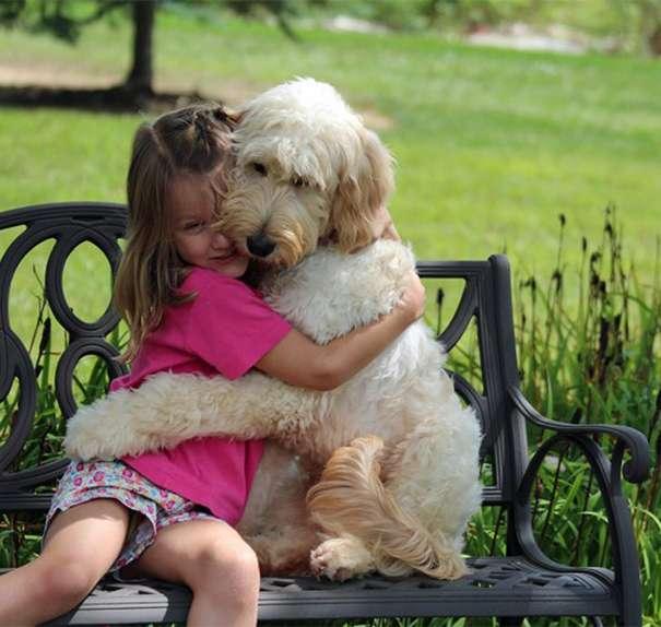 Mengharukan, Aksi Para Anjing Memeluk Pemiliknya Ini Pasti Buat Kamu Tersentuh