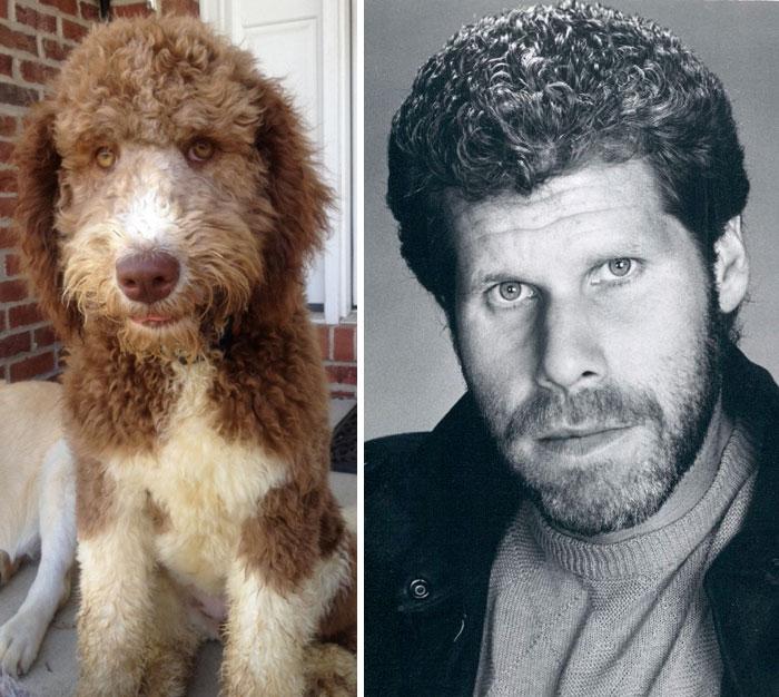 Ron Perlman vs Anjing