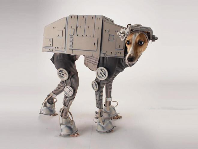 cosplay hewan 4
