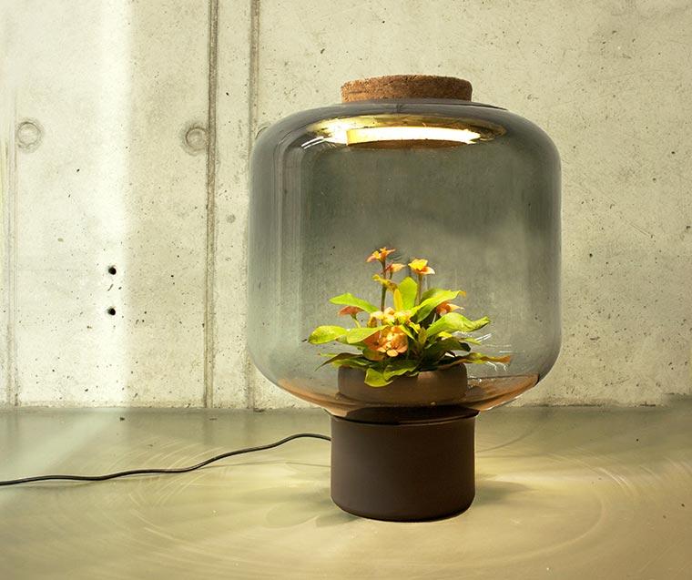 Mau Menanam Tanaman di Dalam Rumah? Plant Lamp Keren Ini Bisa Bantu