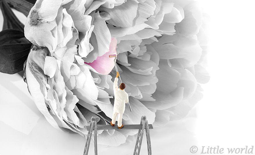 Gimana Ya Rasanya Hidup Sebagai Liliput? Gambar Ini Akan Menjelaskan Semuanya