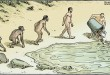 5 Gambaran Plesetan Teori Evolusi dari Zaman ke Zaman
